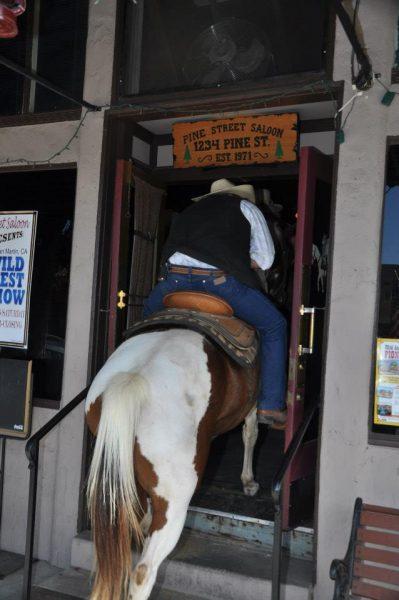 horse-entering-bar