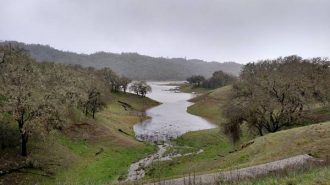 Photo from Lake Nacimiento Facebook.