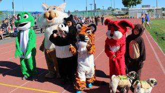 Mascots-get-ready-to-race
