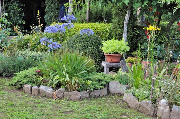 multiflora garden club