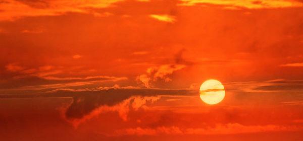 heat advisory paso robles