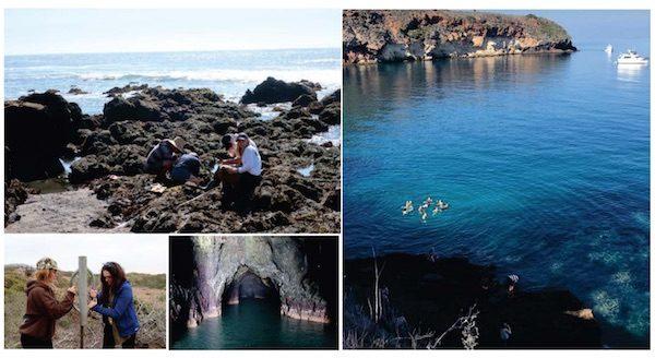 paso robles high school field study santa cruz island