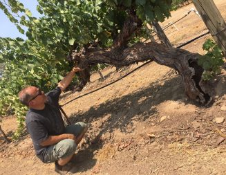 Robert Henson, Peachy Canyon Winery winemaker featured in 'Wine Enthusiast'