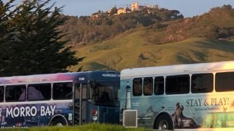 Buses and Hearst Castle