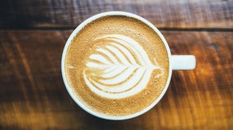 top coffee shops in paso robles