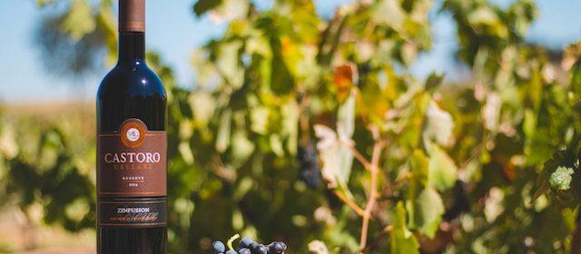 Castoro cellars wine paso robles