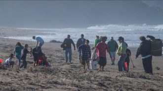 coastal cleanup day slo county