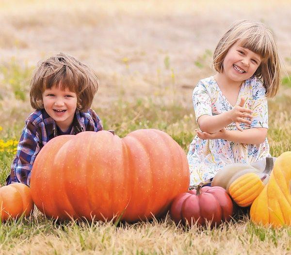 fall family fun fest Paso Robles