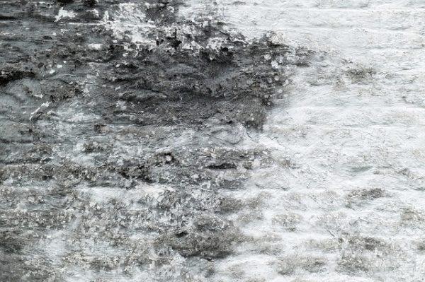 mold damage Los Osos