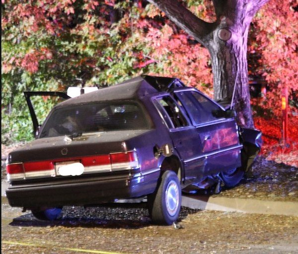 Male driver dies after crashing into oak tree in Atascadero