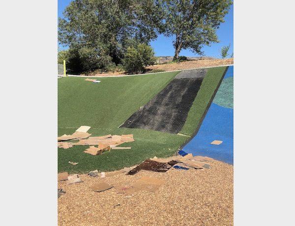 Sinsheimer Park vandalism investigation underway