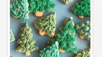 Decorate cookies Dec. 3 with Sweet Grace Cookie Company and Recreation Services