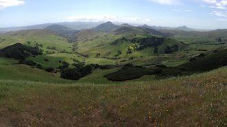 San Luis Obispo awarded $3 million grant to help protect Miossi Brothers La Cuesta Ranch