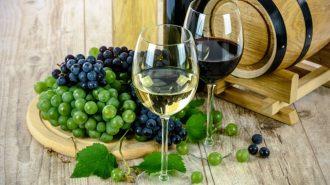 spanish wines paso robles