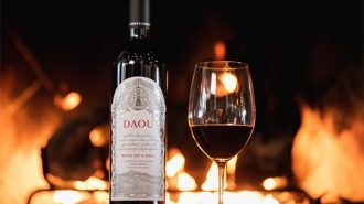 Soul of lion - daou new wine
