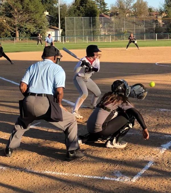 Bearcat softball