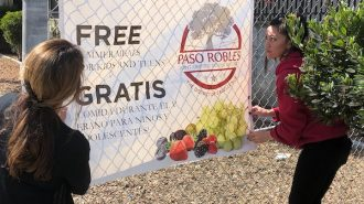 North County schools implement drive-through lunch programs to help families