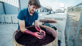 Drew-Nenow-winery