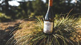Riboli new wine Highlands 41