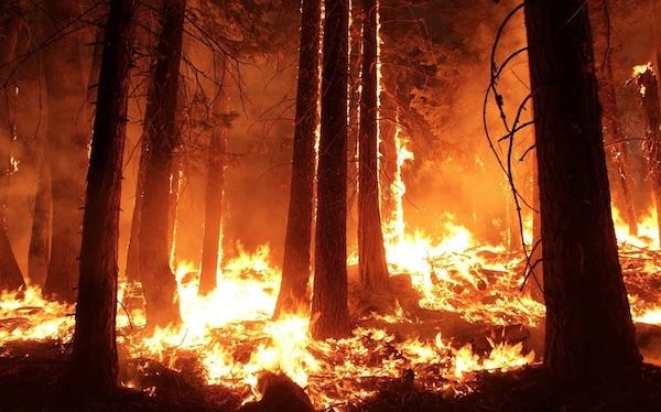 PG&E shares emergency preparedness tips