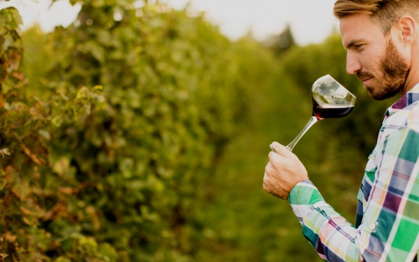 SIP Certified to share survey results, resources for wineries in upcoming webinar