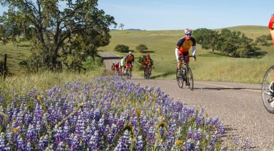 Registration open for 12th annual Tour of Paso bike ride
