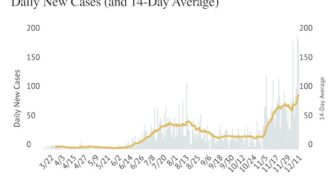 COVID-19: High daily new case count continues with 185 added Friday
