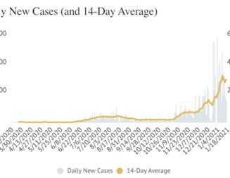 COVID-19 Update: Seven more deaths reported over the weekend, 512 new cases