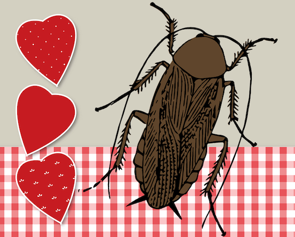 Chales Paddock Zoo presenting 'Adopt-a-Cockroach' Valentines