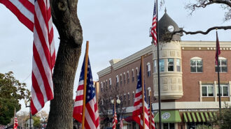 Local-boy-scouts-decorate-downtown-with-flags-IMG-7534
