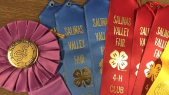 Salinas Valley Fair announces in-person livestock grading show and online auction
