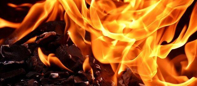control burn san simeon state park