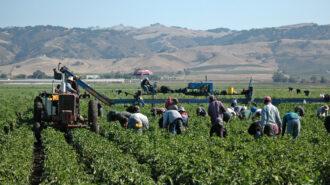 ag labor farm workers covid-19 vaccine