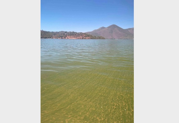 State officials warn recreational water users to watch for dangerous algae