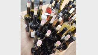 Central Coast wine, vinegar, and spirits competitions name winners