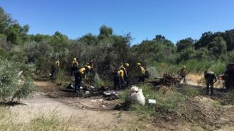Firefighters extinguish riverbed fire Sunday afternoon in Paso Robles