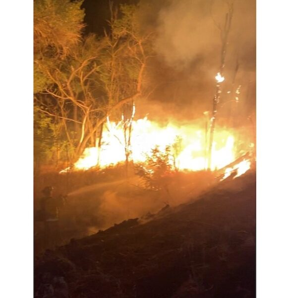 Vegetation fire contained in Salinas Riverbed Wednesday night